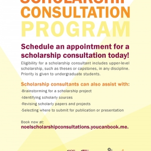 Scholarship Consultation Program